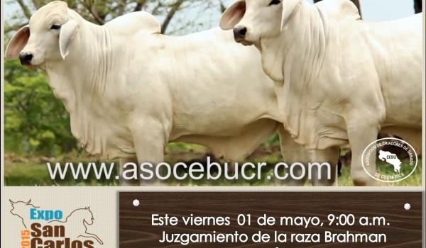 Invitación Expo San Carlos 2015 02