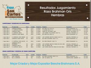 Resultados Expo San Carlos 2015 - Hembras