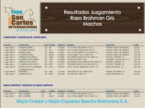 Resultados Expo San Carlos 2015 - Machos