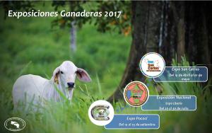 Exposiciones Ganaderas 2017 - ASOCEBÚ
